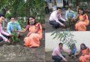 মুজিববর্ষ উপলক্ষে মতিঝিল রাজস্ব সার্কেল ভূমি অফিসের উদ্যোগে বৃক্ষ রোপণ